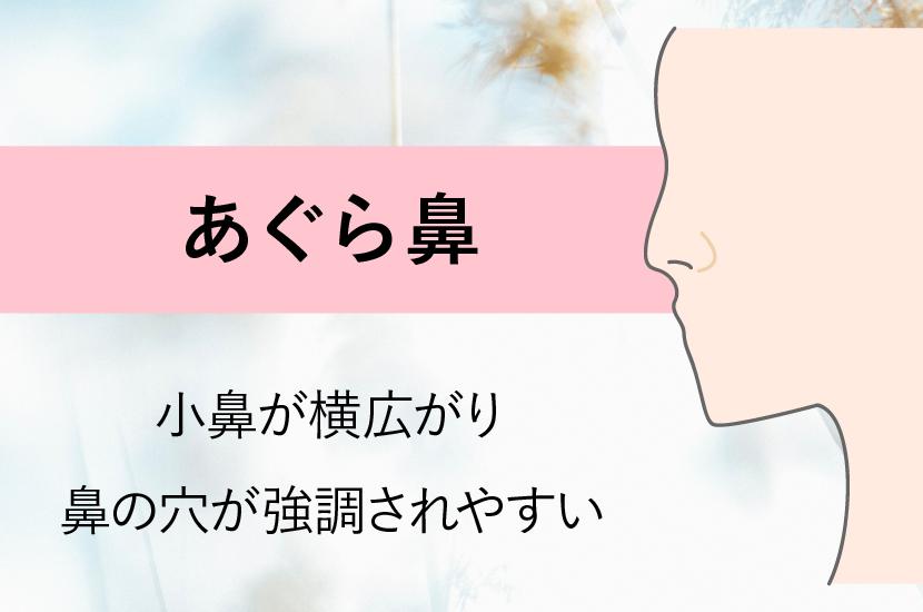 鼻の形の種類と名前の一覧|あぐら鼻・にんにく鼻・団子鼻・鷲鼻、美人 ...